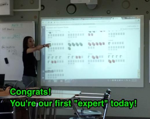 expert0