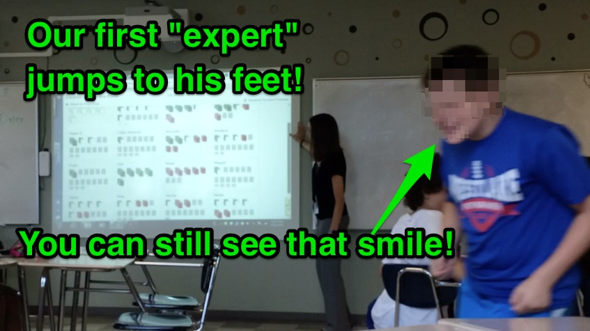 expert1